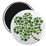 Irish Shamrocks in a Shamrock Magnet