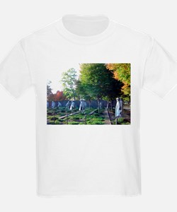 Korean war memorial T-Shirt