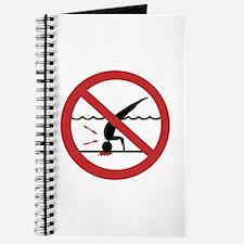 No Diving, International Journal