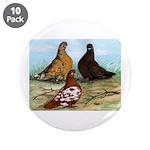 "Shortfaced Tumbler Pigeons 3.5"" Button (10 pa"