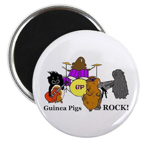 Guinea Pigs Rock! Magnet