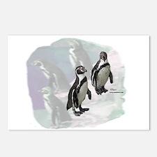 Humboldt Penguins Postcards (Package of 8)