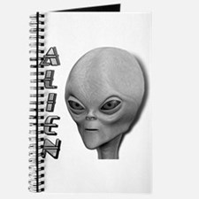 Alien Type 1 Grey Part 2 Journal