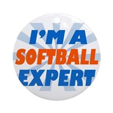 im a softball expert Ornament (Round)