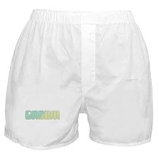 Coastal Stripe Groom Boxer Shorts