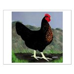 Sex-link Hen Small Poster