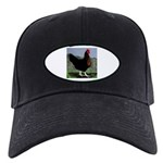 Sex-link Hen Black Cap