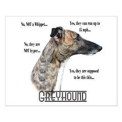 Greyhound FAQ Posters