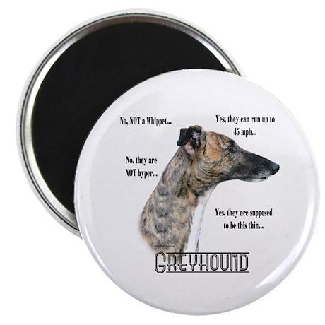 "Greyhound FAQ 2.25"" Magnet (10 pack)"