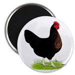 "Black Sex-link Hen 2.25"" Magnet (10 pack)"