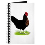 Black Sex-link Hen Journal