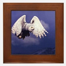 Cute Talon Framed Tile