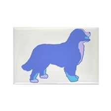 Tri Colorful Bernese Rectangle Magnet