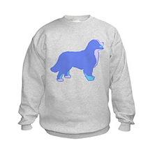Tri Colorful Bernese Sweatshirt