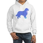 Tri Colorful Bernese Hooded Sweatshirt