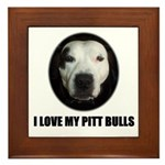 I LOVE MY PITT BULLS Framed Tile