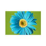 Pop Art Blue Daisy Rectangle Magnet