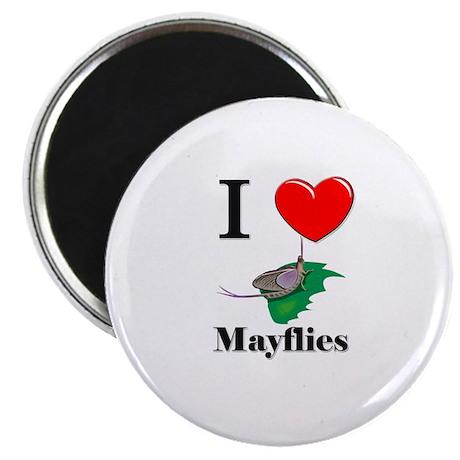 I Love Mayflies Magnet