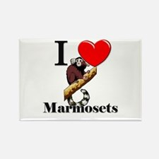 I Love Marmosets Rectangle Magnet