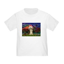 Mt Fuji / Bearded Collie T