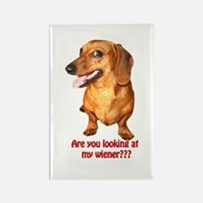 Are you looking at my wiener Dog Magnets