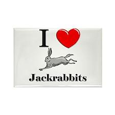 I Love Jackrabbits Rectangle Magnet