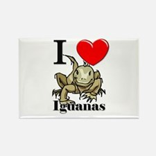 I Love Iguanas Rectangle Magnet
