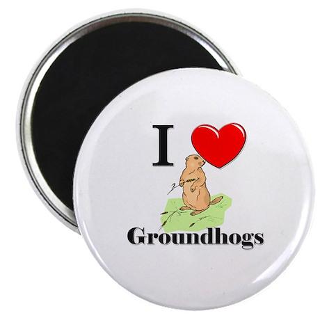 I Love Groundhogs Magnet