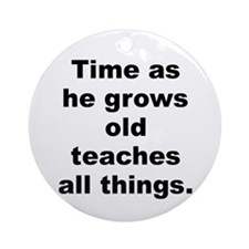 Unique Teaching time Ornament (Round)