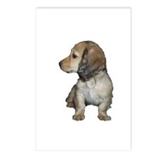Longhair Doxie Puppy Postcards (Package of 8)