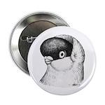 "Helmet Shortface Pigeon 2.25"" Button (10 pack"