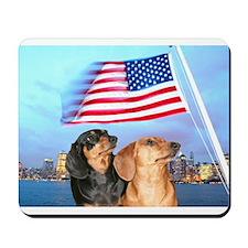 USA Dachshunds Mousepad