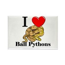 I Love Ball Pythons Rectangle Magnet