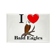 I Love Bald Eagles Rectangle Magnet