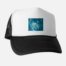 Funny Blueberry pie Trucker Hat
