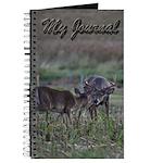 Flirting whitetails Journal