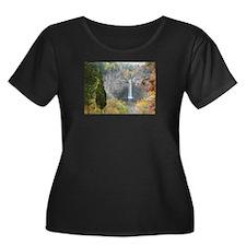 Taughannock Falls T