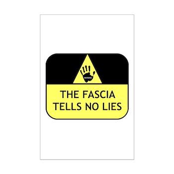 The fascia tells no lies Mini Poster Print