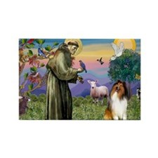 St Francis / Collie Rectangle Magnet