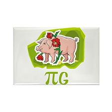 PIG Rectangle Magnet