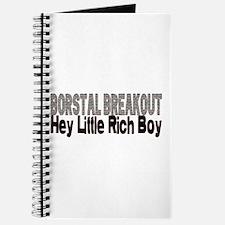 BORSTAL BREAKOUT hey little rich boy Journal