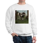 Painted Horse and Foal Sweatshirt