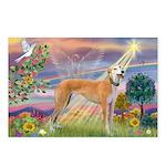 Cloud Angel & Greyound Postcards (Package of 8)