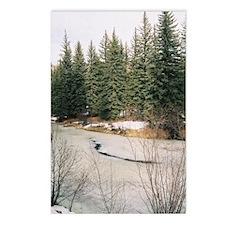 Tarryall Creek, CO Postcards (Package of 8)