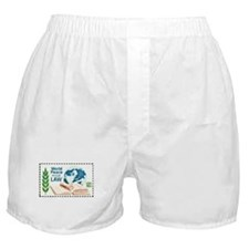 Cute 10x10 Boxer Shorts