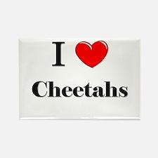 I Love Cheetahs Rectangle Magnet