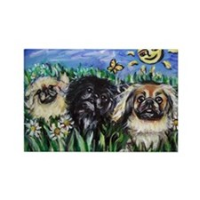 Happy Pekes under the smiling Rectangle Magnet (10