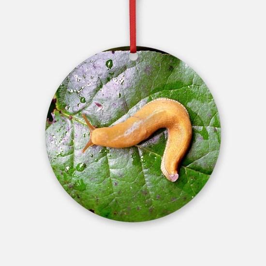 Banana Slug on Leaf Ornament (Round)