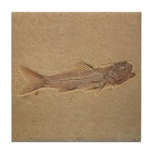 Fish Fossil Ceramic Art Tile Coaster