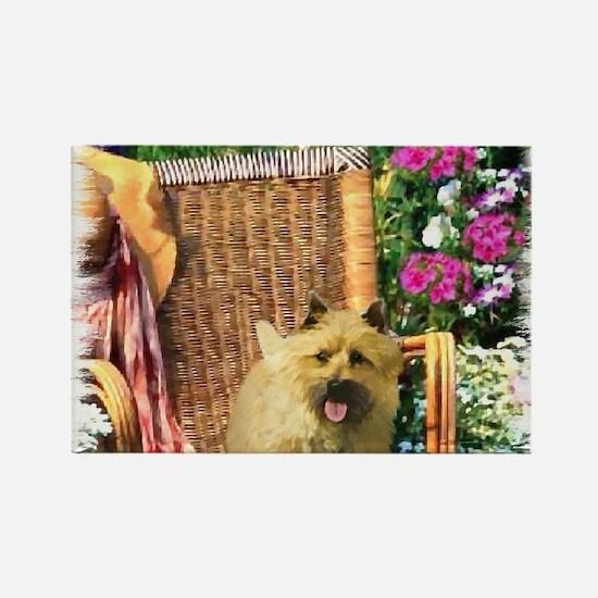 Cairn Terrier Art Rectangle Magnet (10 pack)